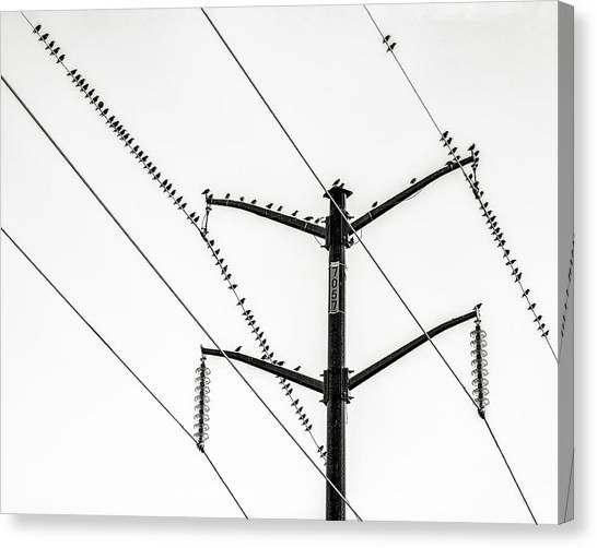 Electric Wires Canvas Prints Page 25 Of 29