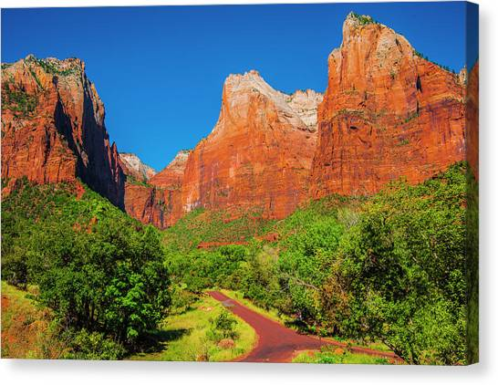 A Fork In The Road Canvas Print by Fernando Margolles