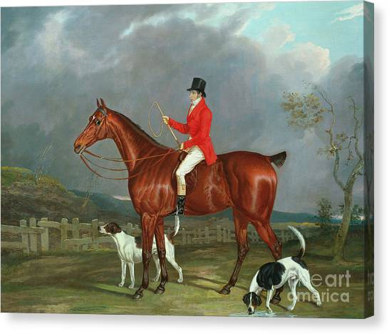 Gent Canvas Print - A Huntsman And Hounds, 1824  by David of York Dalby