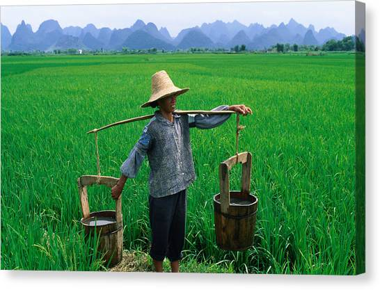A Local Farmer Carrying Water Buckets Canvas Print