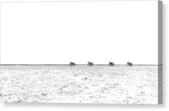 A Long Dusty Road Canvas Print