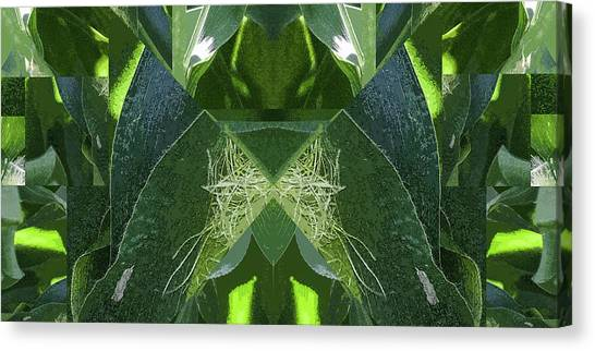 A-maize 2 - Flying Corn - Canvas Print