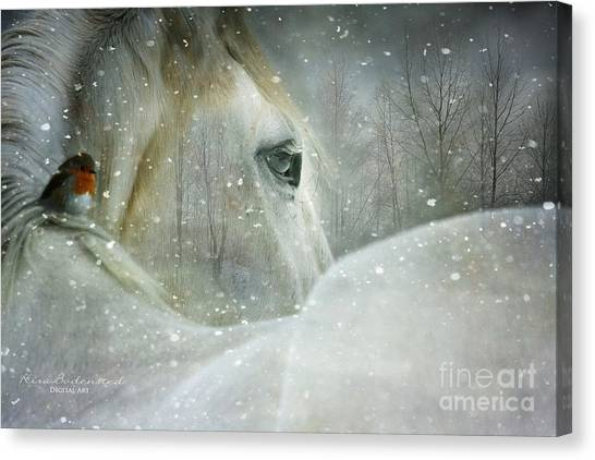 A Midwinters Dream Canvas Print