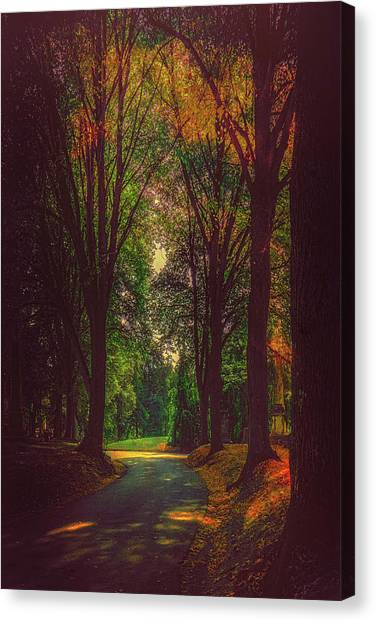 Canvas Print featuring the photograph A Moody Pathway by Chris Lord