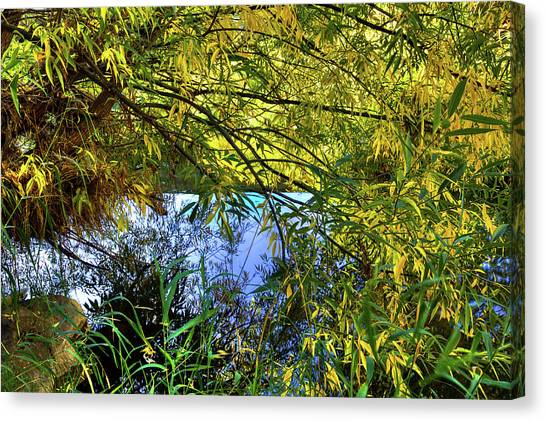 Canvas Print featuring the photograph A Peek At The River by David Patterson