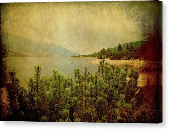 Canvas Print featuring the photograph A Quiet Moment Before Storm... by Milena Ilieva