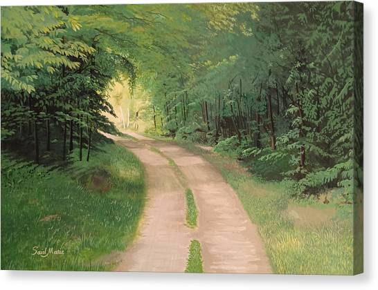 A Road In The Forest Canvas Print