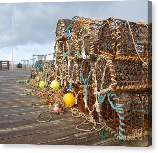 Sea Life Canvas Print - A Selection Of Lobster Pots On The by Djtaylor
