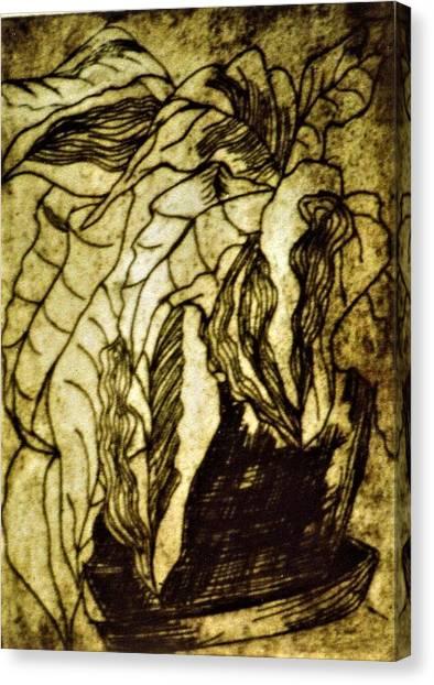 A Stillllife Canvas Print