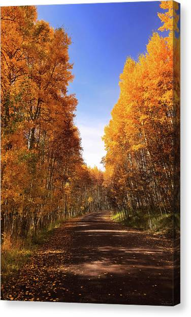 A Walk Down Memory Lane Canvas Print
