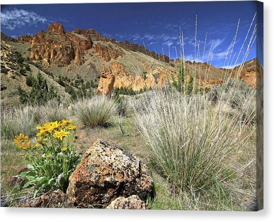 Above Juniper Gulch Canvas Print