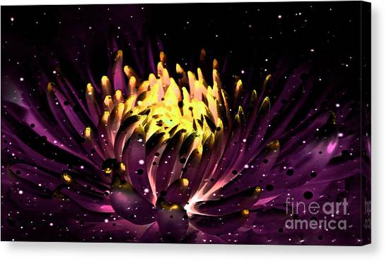 Abstract Digital Dahlia Floral Cosmos 891 Canvas Print