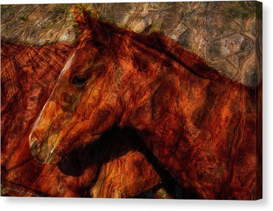 Abstract Horse Photograph Canvas Print by Fernando Margolles