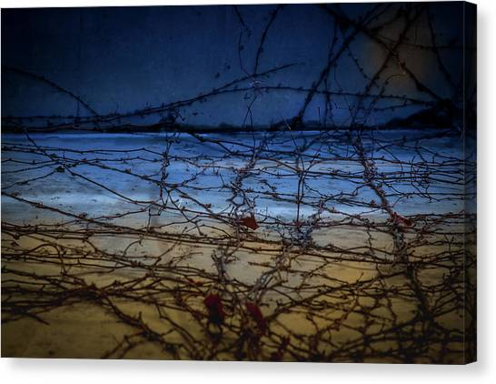Canvas Print featuring the photograph Abstract Landscape by Juan Contreras