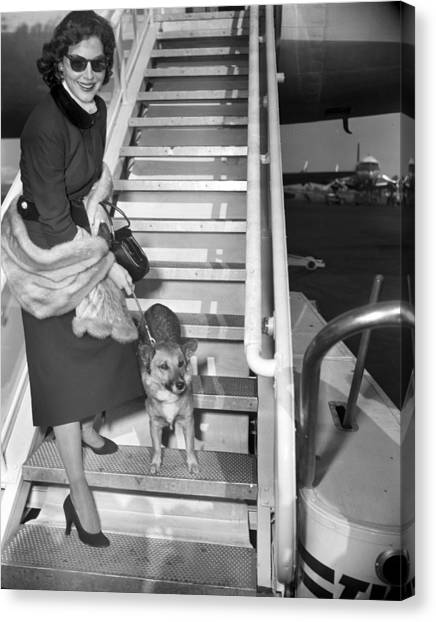 Actress Ava Gardner And Her Dog, Rags Canvas Print by New York Daily News Archive
