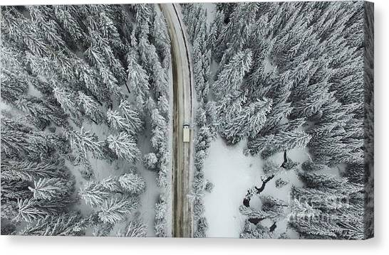 Logo Canvas Print - Aerial View Of A Snowy Forest With High by Omphoto