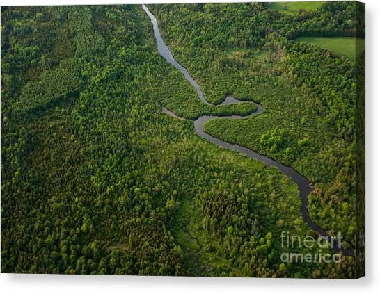 Bush Canvas Print - Aerial View Of A Winding River by Graham Taylor Photography
