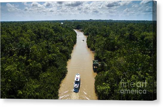 South American Canvas Print - Aerial View Of Amazon River In Belem Do by Esb Professional