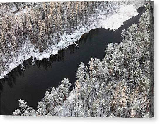 Aerial View Of Forest River In Cold Canvas Print by Vladimir Melnikov
