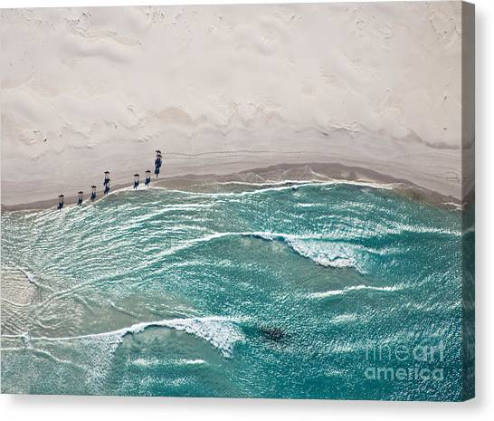 Sandy Beach Canvas Print - Aerial View Of Horses Trotting On by Andrea Willmore