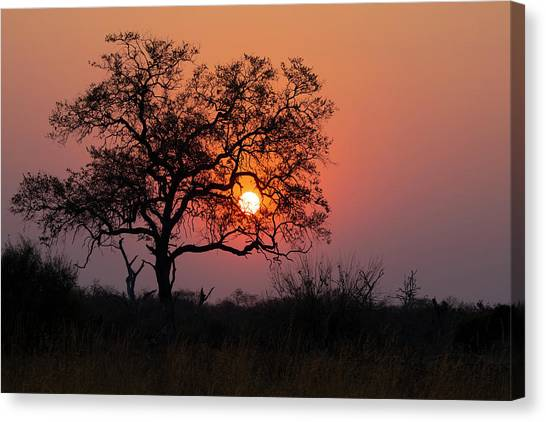 Canvas Print featuring the photograph Africa Sunset by John Rodrigues