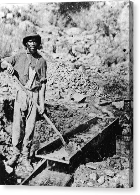 African-american Gold Miner Canvas Print by Hulton Archive