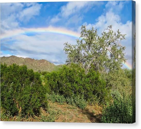 After An Arizona Winter Rain Canvas Print