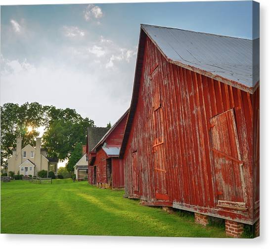 Smokehouses Canvas Print - Afternoon Light At Windsor Castle Park by Mike O'Shell