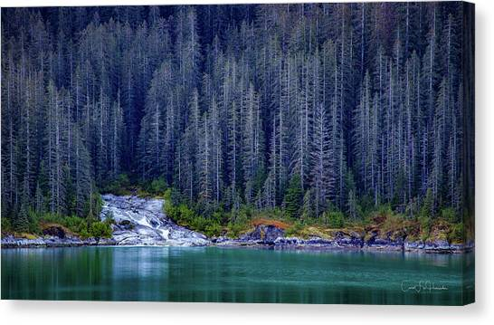 Alaskan Coastline Beauty Canvas Print