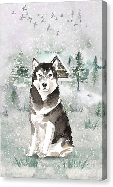 Purebred Canvas Print - Alaskan Malamute by John Edwards