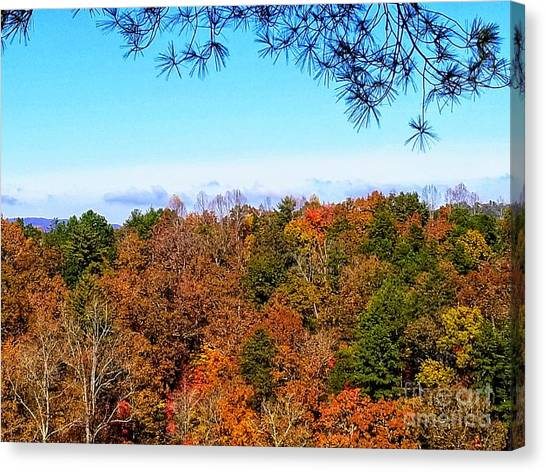 Canvas Print featuring the photograph All The Colors Of Fall by Rachel Hannah