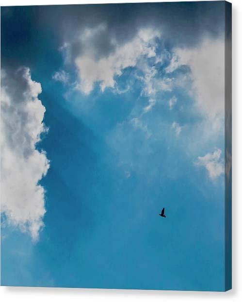 Colours. Blue. Alone. Canvas Print