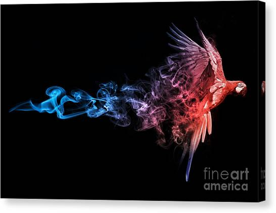 Flying Canvas Print - Amazing Image Of A Flying Macaw Parrot by Effect Of Darkness