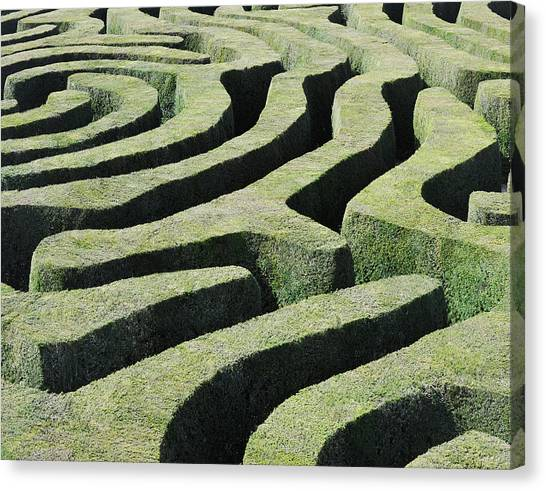 Amazing Maze Canvas Print by Oversnap
