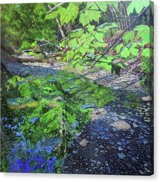 Amberley Creek 3 Canvas Print