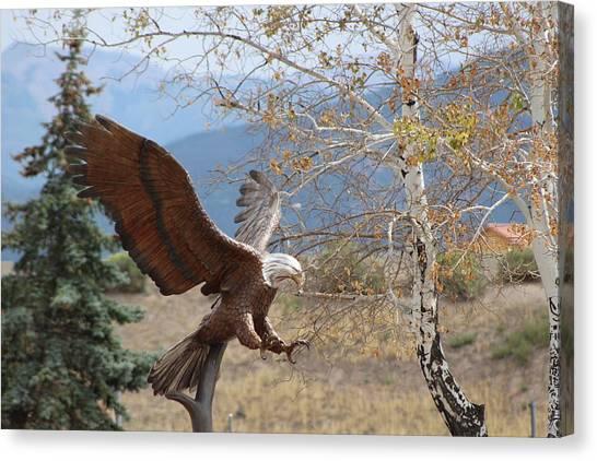 American Eagle In Autumn Canvas Print