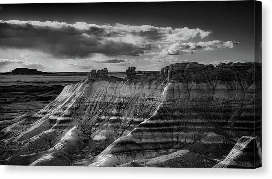 Petrified Forest Canvas Print - American Southwest by Joseph Smith