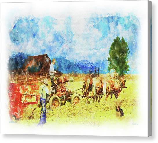 Amish Life Canvas Print