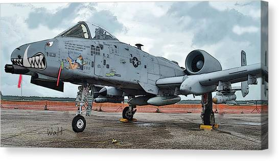 Amy's Warthog Canvas Print