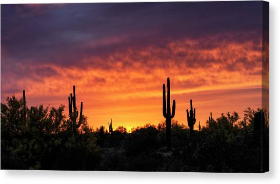 Canvas Print - An Orange Glow Fills The Desert  by Saija Lehtonen