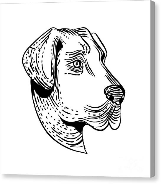 Guard Dog Canvas Prints Page 9 Of 23