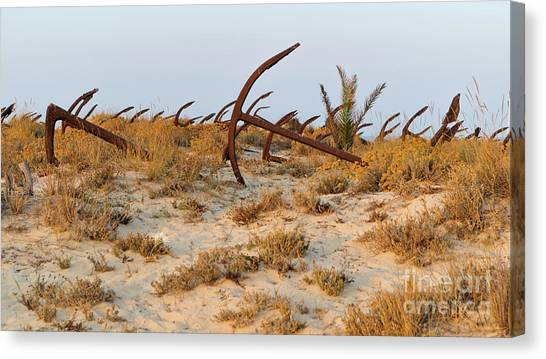 Anchors In Barril Beach Canvas Print