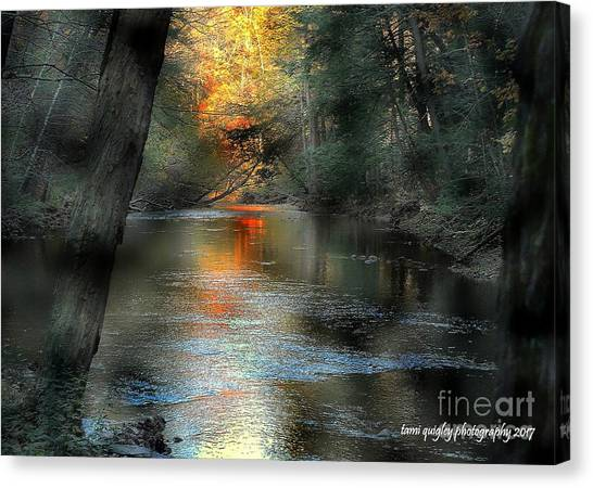 And Autumn Comes  Canvas Print