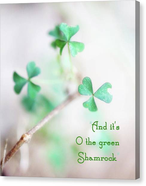 And It's O The Green Shamrock Canvas Print
