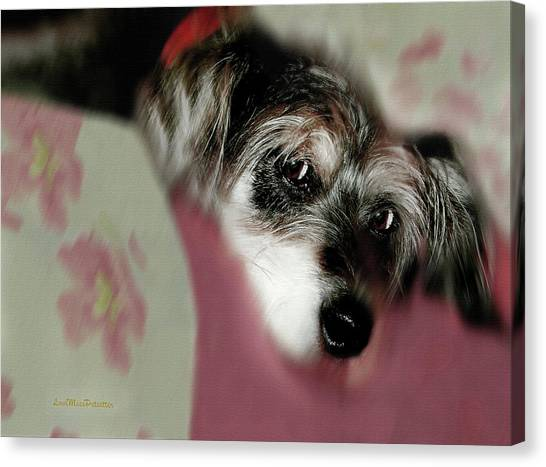 And This Is Sparky6 Canvas Print