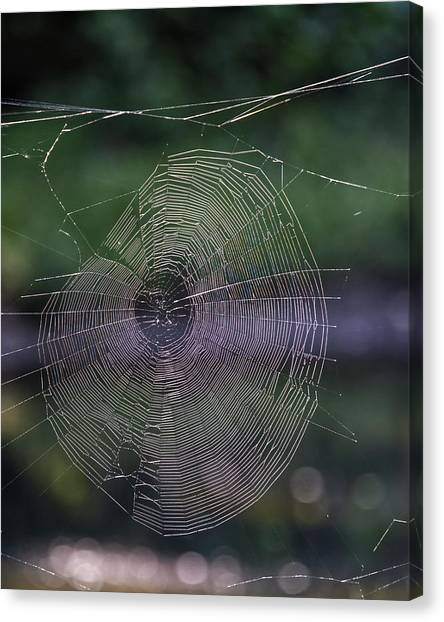 Another Web Canvas Print