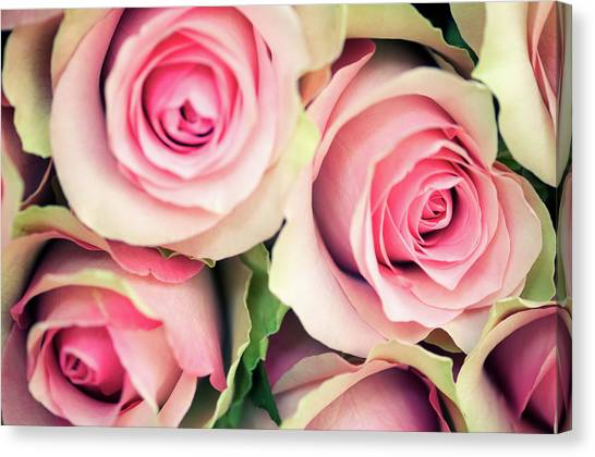 Wedding Bouquet Canvas Print - Antique Roses Full Frame Selective Focus by Peskymonkey