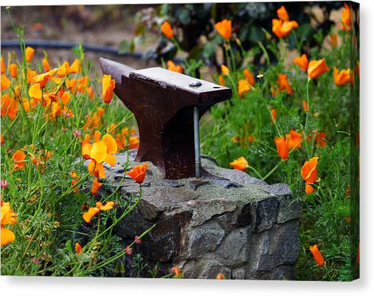 Anvil In The Poppies Canvas Print