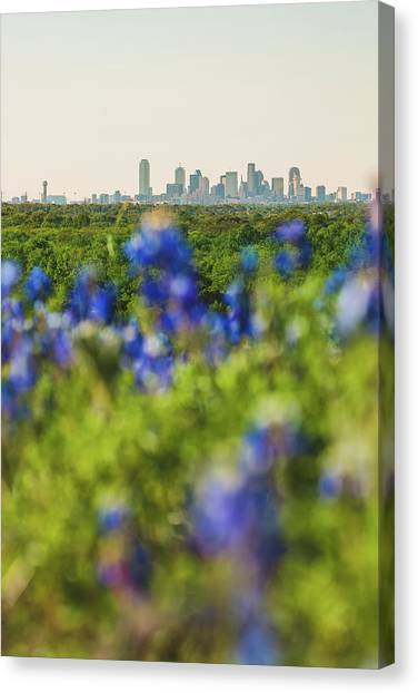 April In Dallas Canvas Print