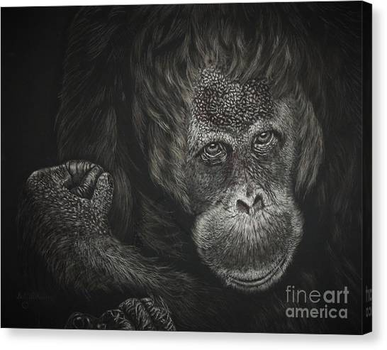 Are You Looking At Me Canvas Print